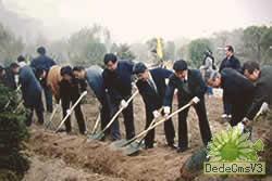 緑化委員会緑化活動ご紹介2001年12月24日