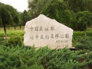 日中森林公園視察報告2010年8月11日