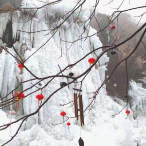 春節!日帰りバスツアー『北京冬の風物詩 黒龍潭風鈴祭り』へ行ってきました